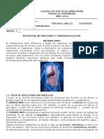 Biologia 7- Metabolismo. Guia 1