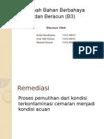 ppt B3
