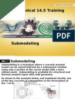 Sub Modeling
