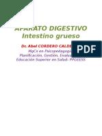 APARATO DIGESTIVO 2