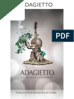 8DIO_Adagietto_Manual.pdf