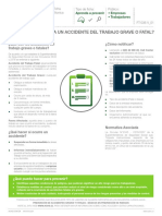 FICHA Accidentes Graves y Fatales 2015
