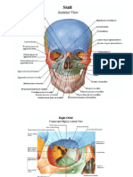 Netter S Atlas Of Human Anatomy Pdf