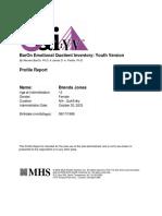 EQiYV-Profile-Report.pdf