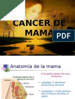 CA de Mama Arlop