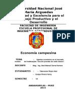 Identificacion de Agentes Economicos - Copia