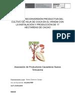 16 2015 Cacao.docx