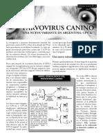 informe_parvovirus_tcm55-33331.pdf