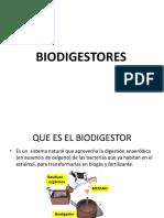 2 Biodigestores Biogas