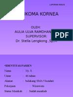 LAPKAS SIKATRIKS KORNEA.pptx
