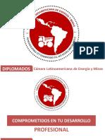 Diplomado Seguridad y Salud en Minería