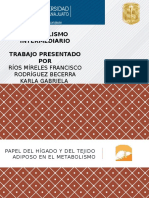 Papel-del-Hígado-en-el-Metabolismo-p-2.pptx
