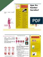 Leaflet-CA-Serviks.doc