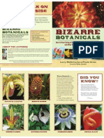 Bizarre Botanicals, by Larry Mellichamp and Paula Gross