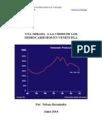Una Mirada a La Crisis de Los Hidrocarburos en Venezuela