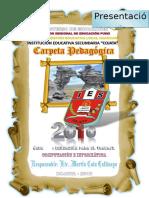 CARPETA PEDAGOGICA 2011