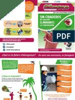 Cartilla Chikungunya