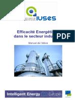 Efficacite Energetique Dans Le Secteur Industriel