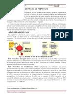Lectura Si-ntesis de Proteinas