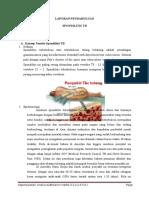 LP Spondilitis TB Versi RINI