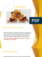 EV Neonatal Jaundice