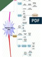 diagrama de las megaminerias a cielo abierto