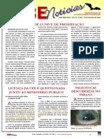 SBENoticias_351