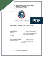 Informe 1 Medioambiente