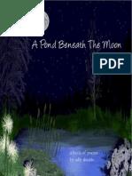 A Pond Beneath the Moon