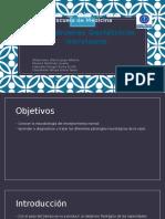 Neurobiología del envejecimiento.pptx