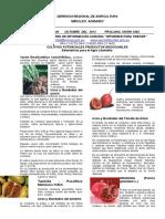 Lalimpul_40_2012_CULTIVOS POTENCIALESEN LA LIBERTAD (2).docx