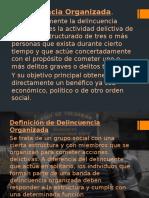 Diapositivas de Los Delincuentes