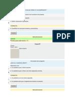 Autoevaluacion Planificacion y Gestion de Proyectos