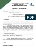 ROTEIRO - Calorimetria