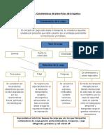 Evidencia 1 - Características del plano físico de la logística.docx