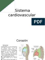 Vascularizacion de Miembro Superior Cuello y Cabbeza