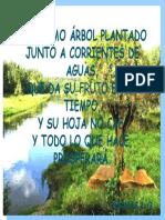 TEXTO SALMOS.pptx