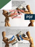 Diapositivas Sucesion Mortis Causa