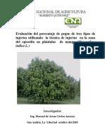 Evaluación del porcentaje de pegue de tres tipos de injertos utilizando la técnica de injertar en la zona del epicotilo en plántulas de mango (Manguifera indica L.)