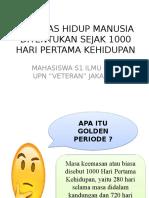 PPT 1000 HPK