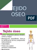 Tejido Oseo y Cartilaginoso