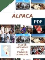 Proyecto Alpaca