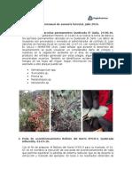 201607 Reporte de asesoría forestal AA.docx