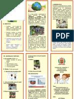 triptico  expociencia.doc