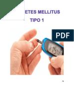 Anatomia y Fisiologia Diabetes Mellitus Tipo 1