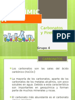 Carbonatos y Piretroides, Ppt Final