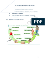 Ud 1. Estructura y Organización General Del Cuerpo Humano