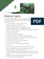 Ayurved Information on Hurb Plants