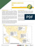 Boletin Monitoreo Maiz 1ra Decada Abril2016