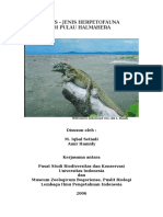 Herpetofauna Halmahera